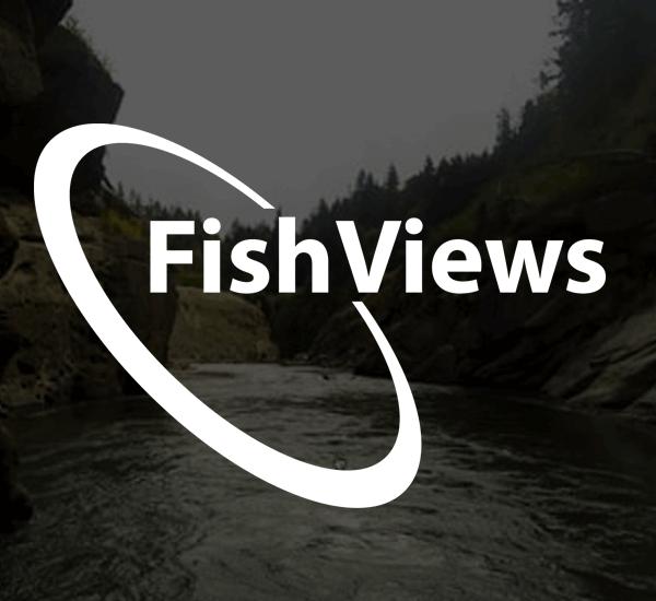 Fish Views