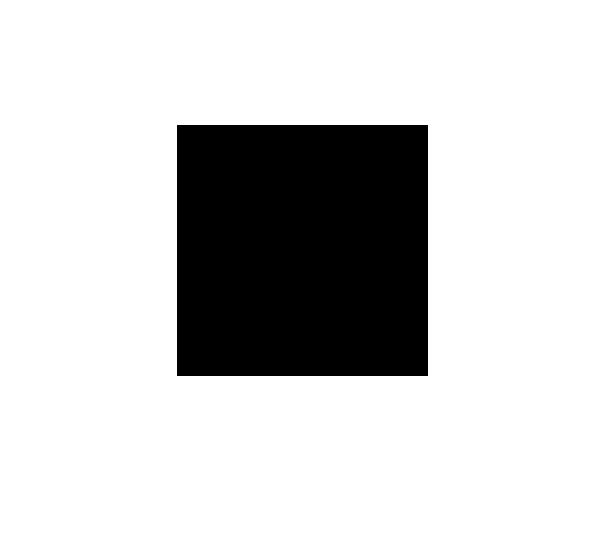 Quiet Capital Logo